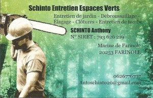 CARTE SCHINTO ANTHONY